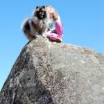 Hund och flicka på stor sten.