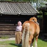 Ardennerhäst och kulla