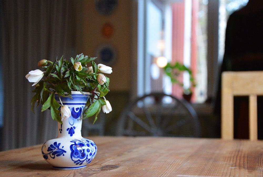 Vitsippor i en liten blåvit vas på ett gammalt slagbord.