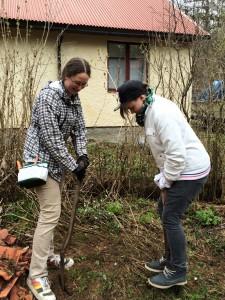 Får hjälp av bästa Thomas att göra en grop åt trädet i den inte helt lättgrävda jorden.